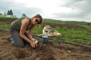 Corrie on Farm