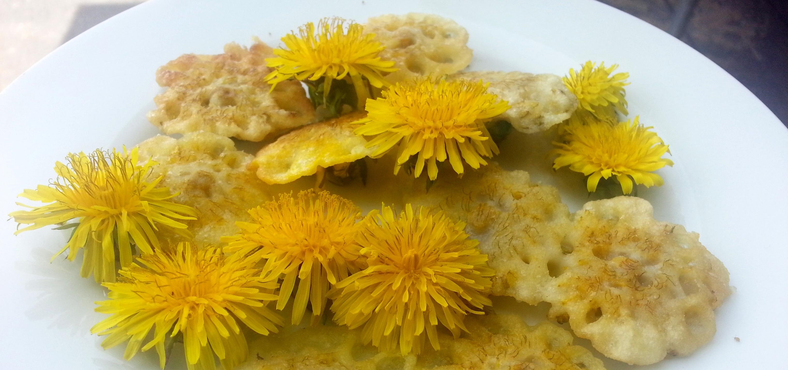 Dandelion Fritters 3